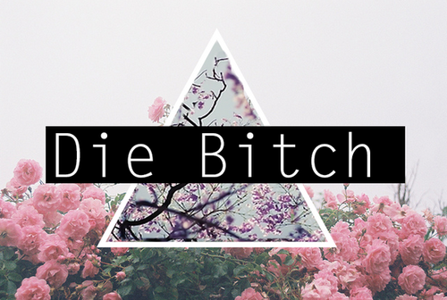 bitch, die, and flowers image