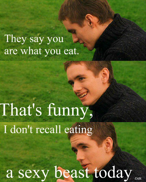 harry potter, oliver wood, and funny image