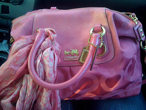 pink, bag, and coach image