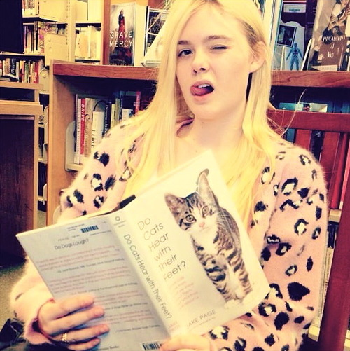 cat and Elle Fanning image