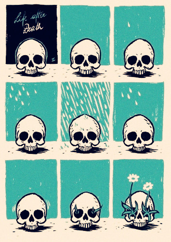skull, death, and life image