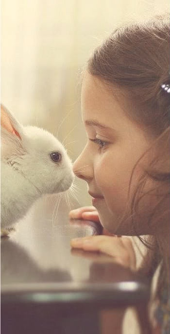 cute, rabbit, and girl image