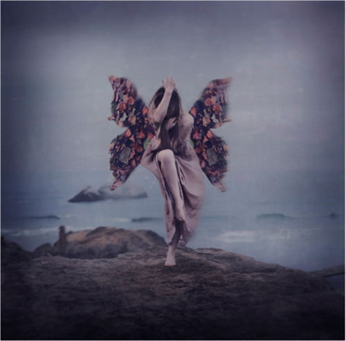 butterfly, photography, and sea image