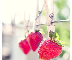 strawberry, photography, and fruit image