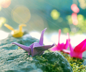 origami, colors, and Paper image