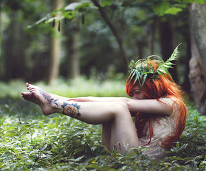 fairy, trees, and forest image