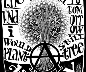tree and anarchy image