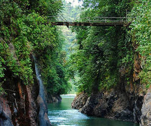 nature, costa rica, and green image