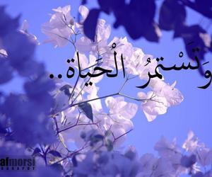 amazing, flowers, and islam image
