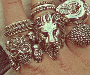 lion, rings, and accessories image
