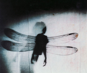 dark, dragonfly, and wings image