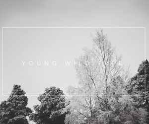 text, young, and free image