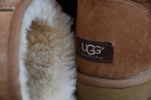 bracelet, earrings, and ugg image