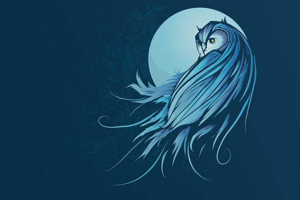 blue and owl image