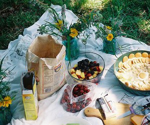 food, picnic, and vintage image