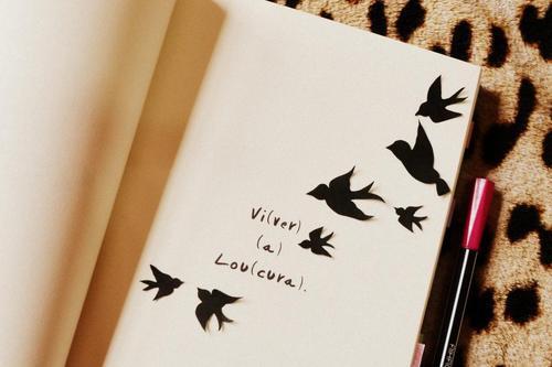 book, vida, and cute image