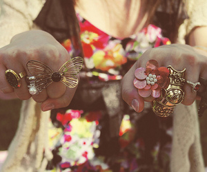 fashion, rings, and butterfly image