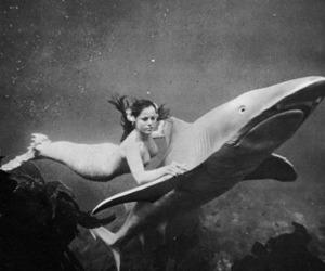 mermaid, shark, and black and white image