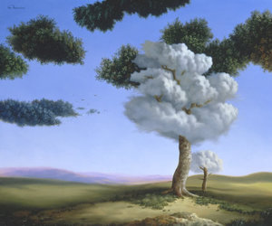 tree and cloud image