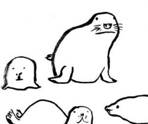 drawning, illustration, and seals image