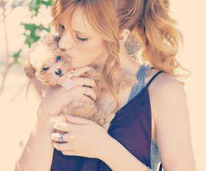 bella thorne and dog image