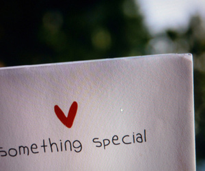 heart, special, and text image