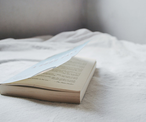 book, vintage, and white image