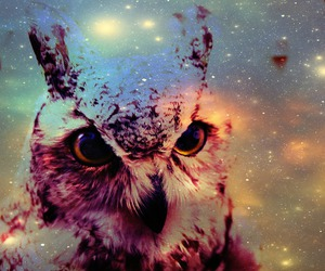 galaxy, owl, and vintage image