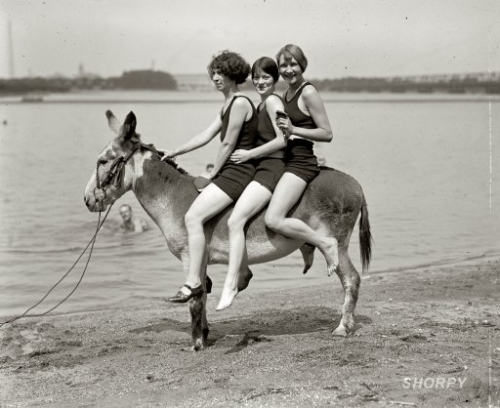 beach, girls, and vintage image