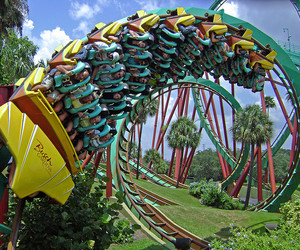 Action, theme park, and ride image