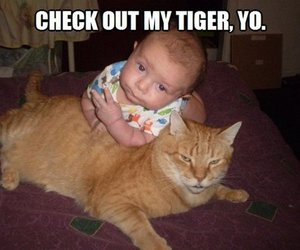 baby, funny, and tiger image