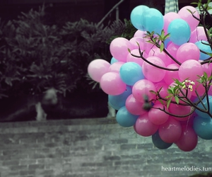 balloons, tree, and blue image