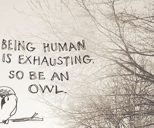 owl, human, and quote image