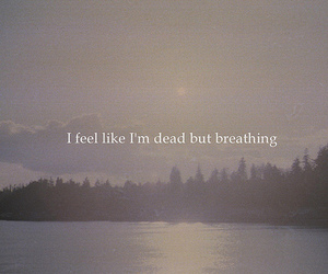 dead, quote, and breathing image