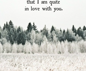 love, quotes, and in love image