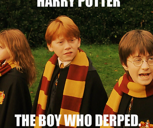 harry potter, derp, and lol image