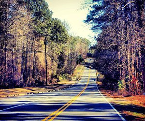 paradise, peace, and road image