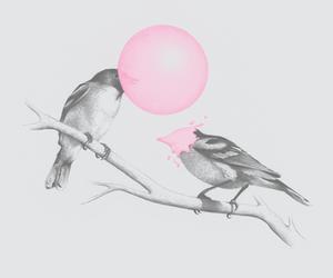 art, birds, and gum image