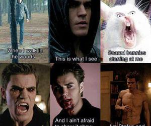 tvd, stefan, and funny image