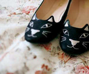 cat, shoes, and photography image