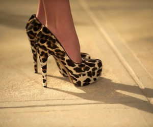 fashion, leopard print, and heels image