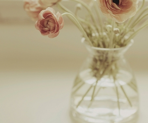 flowers, vase, and pink image