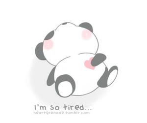 panda, cute, and tired image