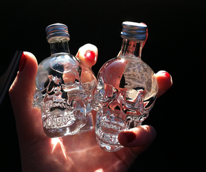 skull, vodka, and drink image