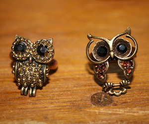 owl, rings, and cute image