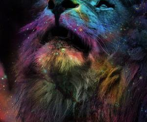 animals, imagine, and lion image