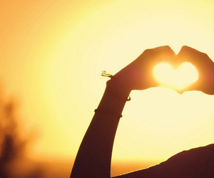 heart, photography, and sun image