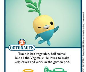 cute, octonauts, and tunip image