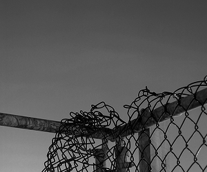b & w, fence, and black & white image