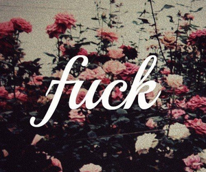 flowers, fuck, and roses image